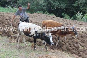 IPS Sikkim Pix 2